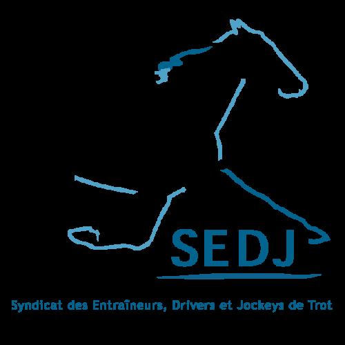 SEDJ Logo