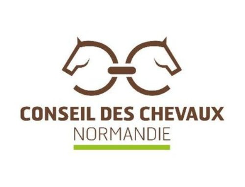 Enquête Conseil des chevaux